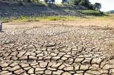 Manuelita se une al Acuerdo Cero Deforestación para el Sector Palmicultor colombiano