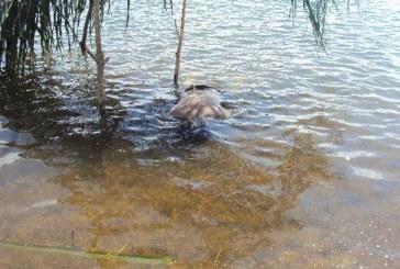 Trabajador de empresa que realiza mantenimientos viales pereció ahogado en quebrada de Nunchía
