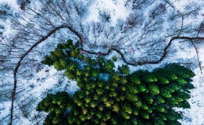 Las mejores fotografías tomadas por drones