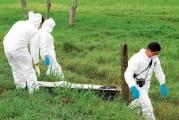 Un empleado asesinado y otro herido dejó un grupo de hombres armados en zona rural del municipio de San Luis de Palenque.