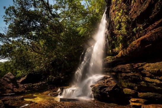 Meta  firmó acuerdo de entendimiento sobre gobernanza forestal y desarrollo sostenible
