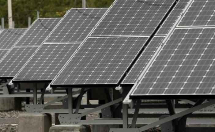 Granja de la U.N. Sede Orinoquia funciona con luz solar