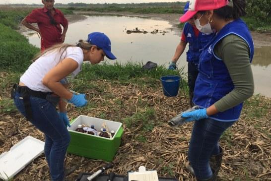 Avanza la investigación para determinar mortandad de peces en Arauca
