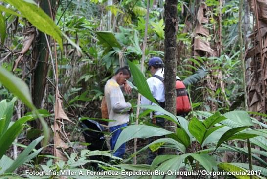 Expedición al Vichada que permitió la caracterización de 14.600 hectáreas