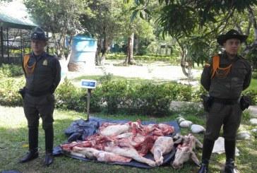 Incautación de carne de res en matadero clandestino