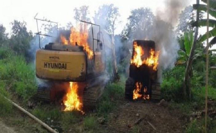 Fedepalma denuncia situación del orden público en Tumaco que paraliza la producción agroindustrial.