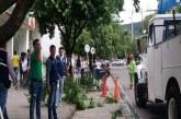 Adelantan poda de árboles en inmediaciones de cámaras de seguridad