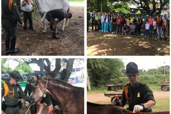 Jornada de protección animal se realizó en Yopal con apoyo de la Policía Nacional