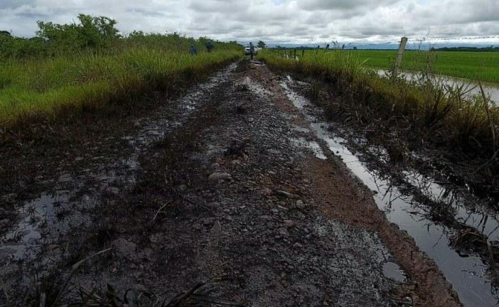 #EnAudio El derrame de crudo que hubo en Casanare es por irresponsabilidad de Perenco: Martha Plazas, Dr. Corporinoquia.