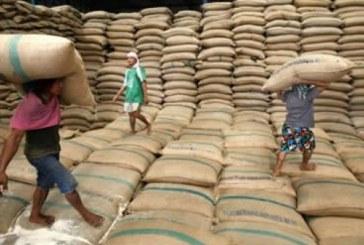 Arroceros y gobernación de Casanare se unen para decirle no a la importación de arroz ecuatoriano.