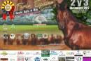 Casanare se alista para la Feria Equina este 2 y 3 de diciembre