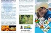 100 nuevas hectáreas de cultivos promisorios se sembrarán en Casanare