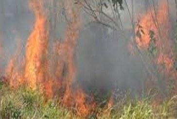 En Yopal a la fecha se han presentado más de 80 incendios forestales en lo corrido el 2018.