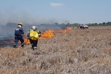 Más de 23 mil hectáreas de vegetación van consumidas por incendios forestales durante esta primera temporada seca en Casanare.