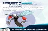 En Casanare en alerta porque invierno impulsaría zika, dengue, chikungunya y fiebre amarilla.