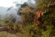 Incendios forestales queman sabanas y bosques en Paz de Ariporo sin atención del cuerpo de Bomberos del municipio.