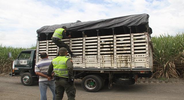 Se incrementa el abigeato en Casanare