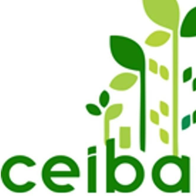 Arbitrariamente alcalde quiere cambiar estatutos de La Ceiba