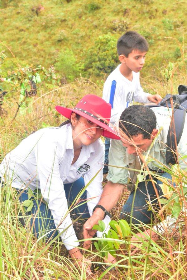 """Cerro """"El Venado"""", hoy respira mejor con siete mil árboles nuevos"""