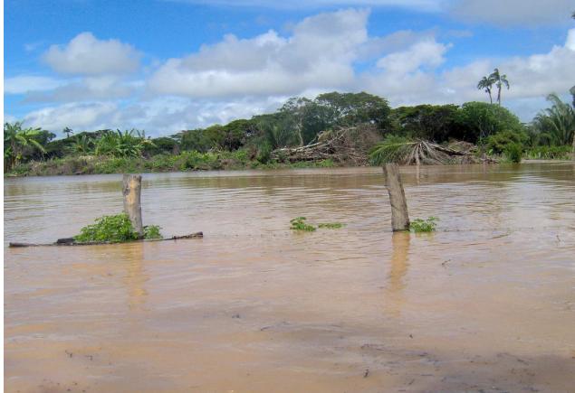Obra de mitigación para el río Pauto en San Luis de Palenque colapsó