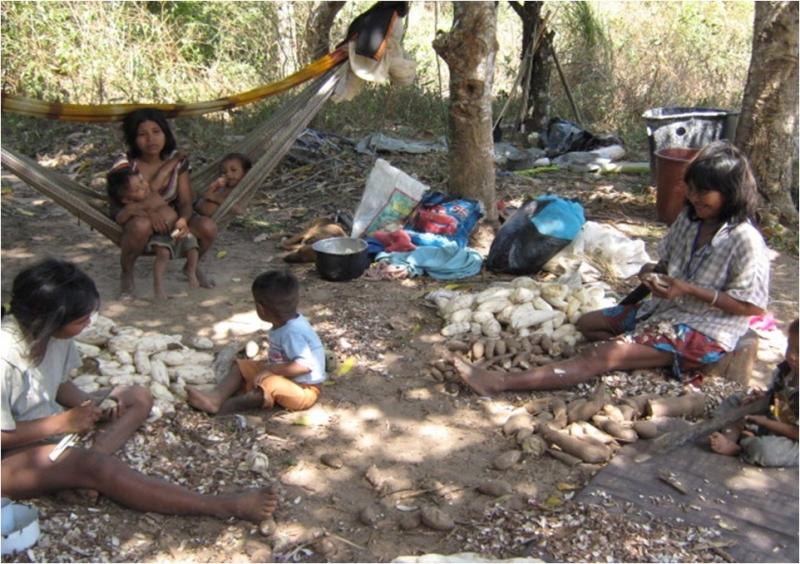 Notificados los municipios de Paz de Ariporo y Hato Corozal sobre Acción de Tutela en favor de comunidad Indígena de Caño Mochuelo