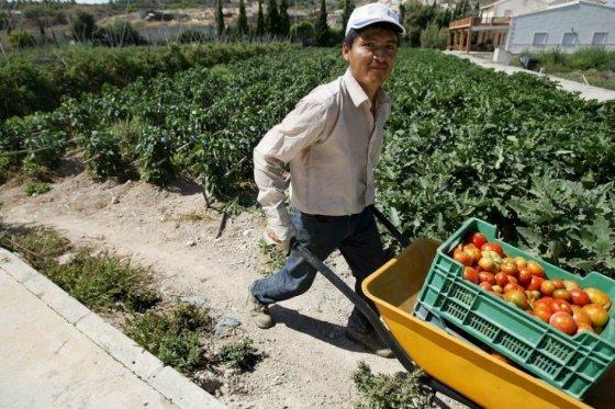 Estudiante de U. Nacional diseñó aplicación web para beneficio de los agricultores