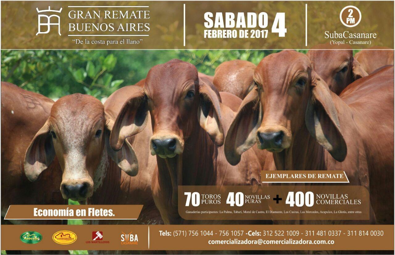 Gran Remate de Buenos Aires Inf: Aso Cebú 3118410337-311814 0030