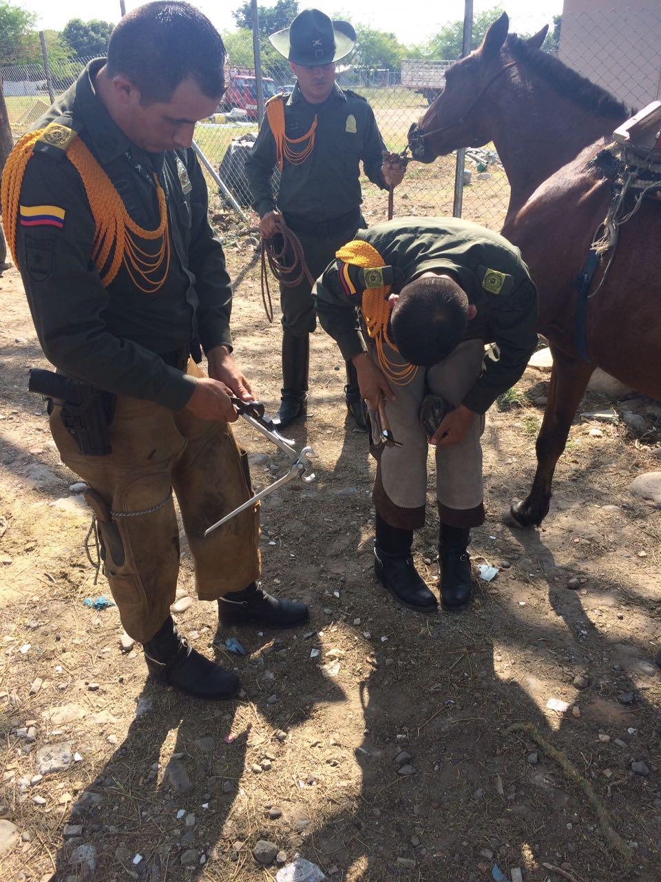 Carabineros de la Policía realizaron jornada de protección animal en Yopal