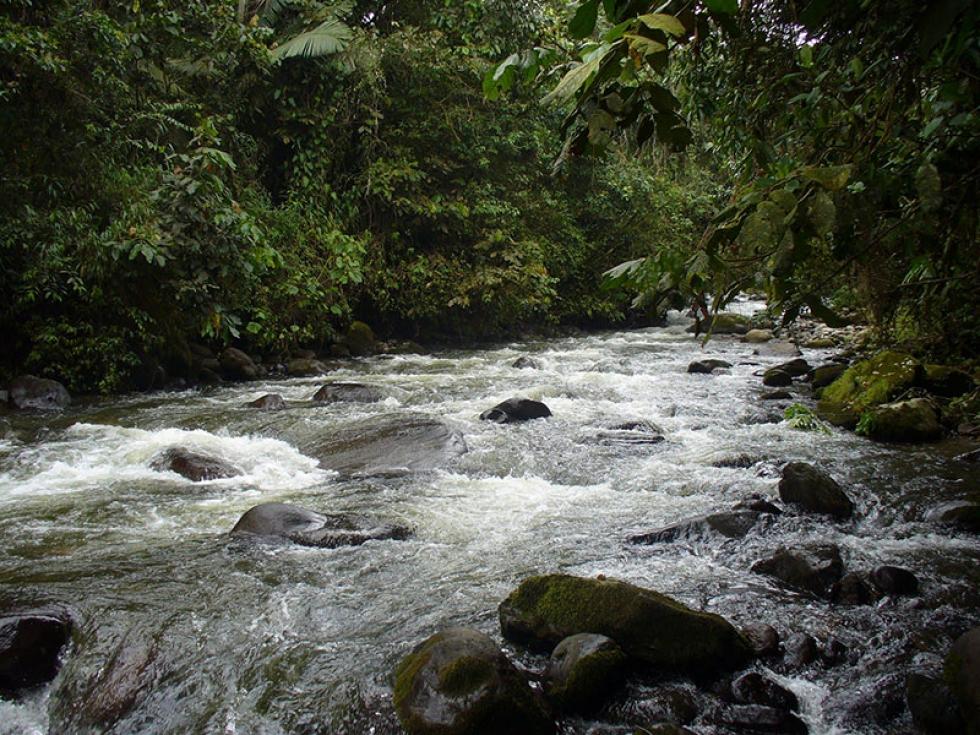 Premiarán las mejores iniciativas para la conservación del recurso hídrico