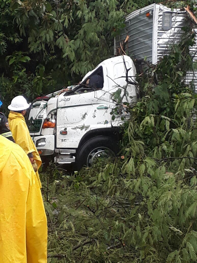 Impacto de un árbol que cayó sobre la cabina mató al conductor de un camión en Aguazul