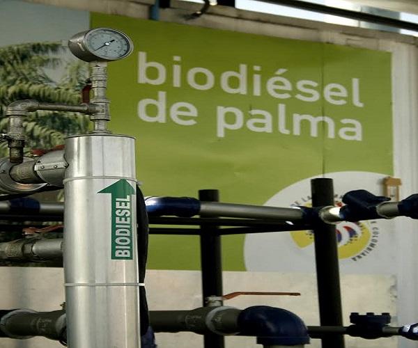 Incremento de mezcla de biodiésel de palma al 9% para Centro del país y Llanos Orientales.