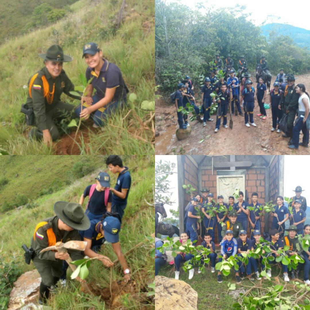 Carabineritos sembraron más de 700 árboles en el cerro El Venado de Yopal