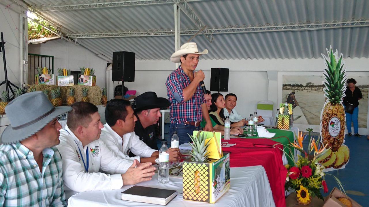 "#EnAudio GobCasanare lanza programa ""Casanare siembra piña"""