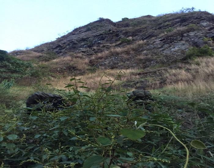 Operaciones militares en límites de Boyacá y Casanare dejan otro cabecilla del ELN muerto.