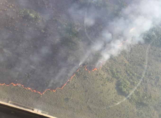 Tres grupos de trabajo intentan controlar incendio en La Macarena.