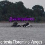 Aguas del Río Charte arrastró camión con carga que intentó cruzarlo en el sector de San Rafael de Morichal.