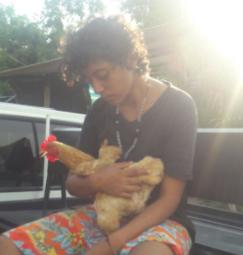 En Paz de Ariporo, un joven fue capturado tras robar una gallina a anciana de 87 años