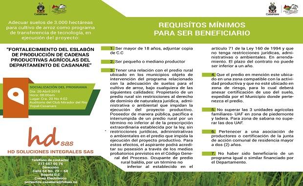 3.000 hectáreas de suelos serán adecuadas para el cultivo de arroz.
