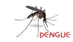 #EnAudio Ante un cuadro de Dengue lo recomendable es no automedicarse